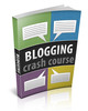 Thumbnail Blogging Crash Course (with PLR)