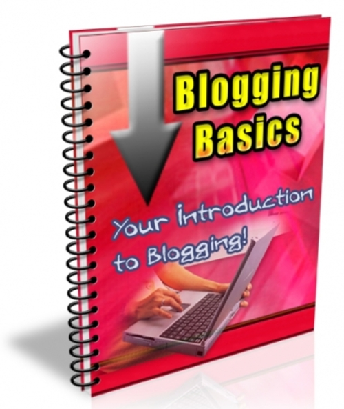 Product picture Blogging Basics 2013 (PLR license)